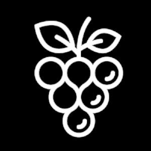 wine_trans